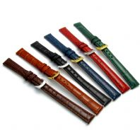 Coloured Padded Croc Grain Leather Watch Strap 10mm 12mm 14mm 6 Colours! D016